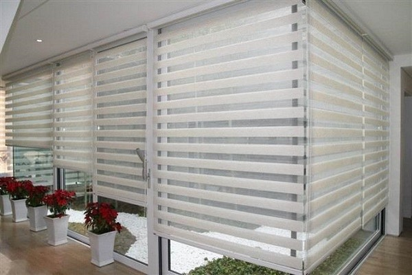 zebra blinds sharp point jakarta